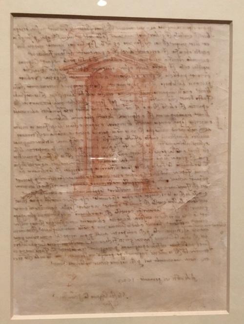 Michelangelo Drawing Paper Phoenix