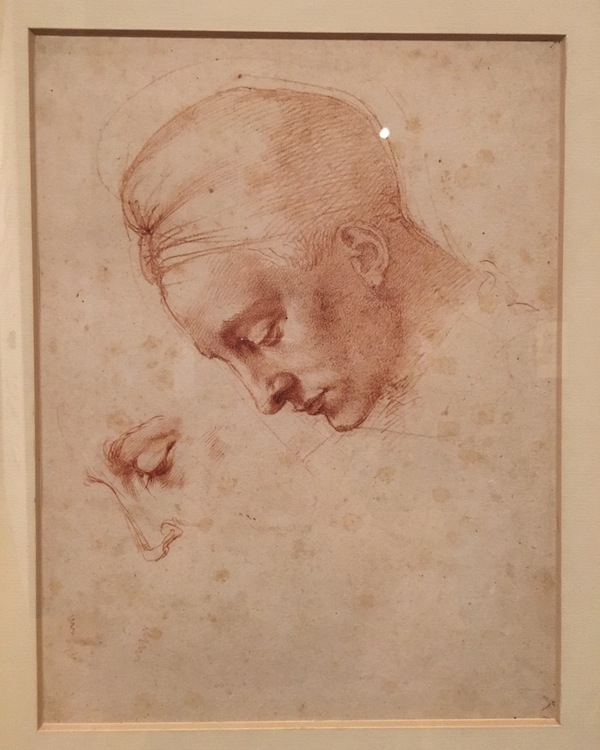 Michelangelo Drawing Model Head