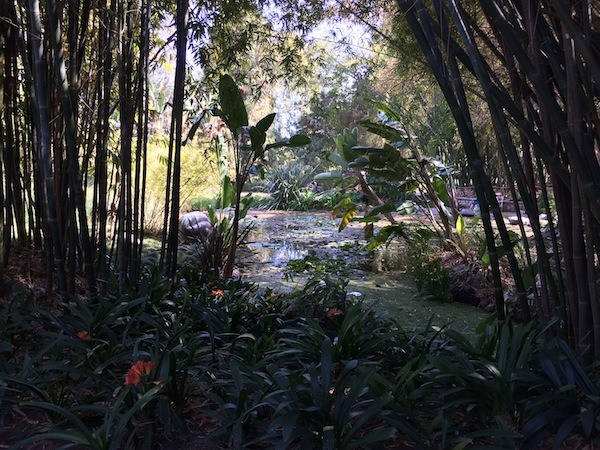 Gardens at the Huntington